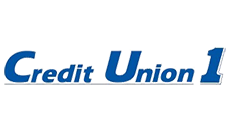 Credit Union 1 Enlists Services of D. Hilton Associates to Conduct Search for Chief Operating Officer